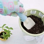 after school care activities pot gardening