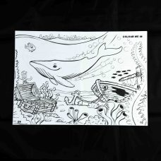 Whale of an Activity Book Centre page Humpback Whale for colouring in fun