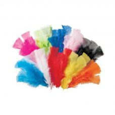 Feathers 60g Assorted Colours