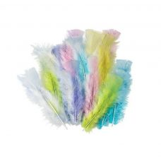 feathers pastel ASSORTED colours
