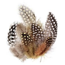 Guinea Fowl Feathers 10g - approximately 100 feathrs in each pack